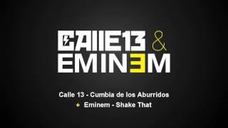 Calle 13 - Cumbia De Los Aburridos Lyrics | MetroLyrics