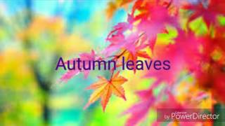 AUTUMN LEAVES (Cassidy, Clapton, Sinatra cover)