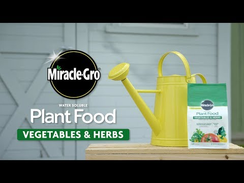, title : 'How to Use Miracle-Gro® Vegetable & Herb Plant Food