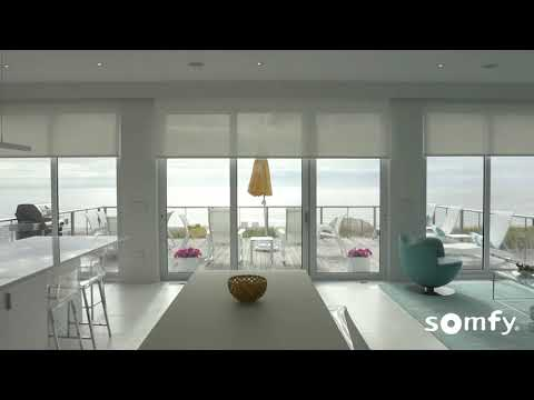 Somfy MyLink Motorized Shades Paired with Amazon Alexa
