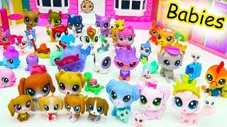 Littlest Pet Shop Dog, Cat, Animal Family Mom, Dad & Baby LPS Haul - Cookie Swirl C