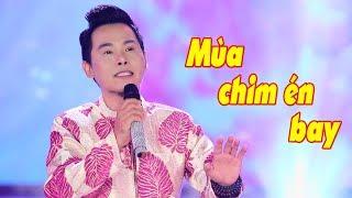 Nhạc Xuân Mậu Tuất, Nhạc Tết 2018   MÙA CHIM ÉN BAY - TRƯỜNG KHA
