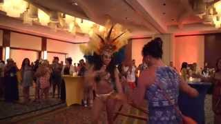 2014 Carnaval Party