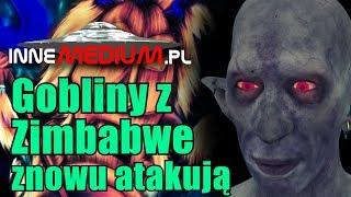 Kolejny incydent z goblinami z Zimbabwe!