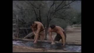 """Фильм-вестерн """"Молодые стрелки Техаса """",1962 год."""