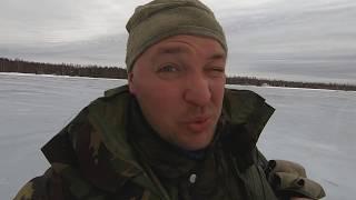 Как рыбалка на двинье псковской области