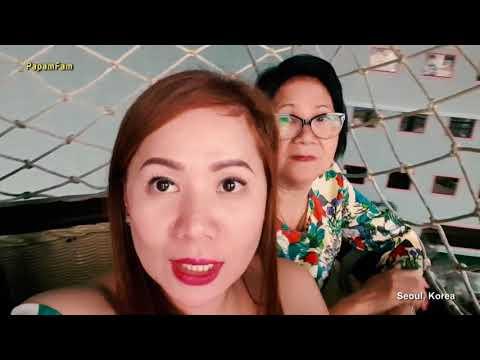 Araw ng protina araw-araw karbohidrat upang mawala ang timbang