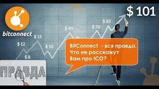 BitConnect  - вся правда.  Что не расскажут Вам про ICO?