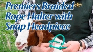 Premier's Braided Rope Halter with Snap Headpiece