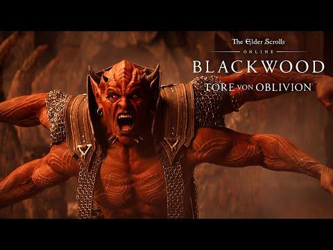 The Elder Scrolls Online: Alle Gruppenaktivitäten
