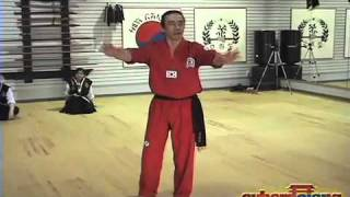"The ""Handshake Submission"" By Grandmaster Taejoon Lee"