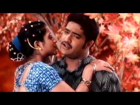 Nee Navvula Full Video Song || Aadi Movie || Jr. N. T. R, Keerthi Chawla