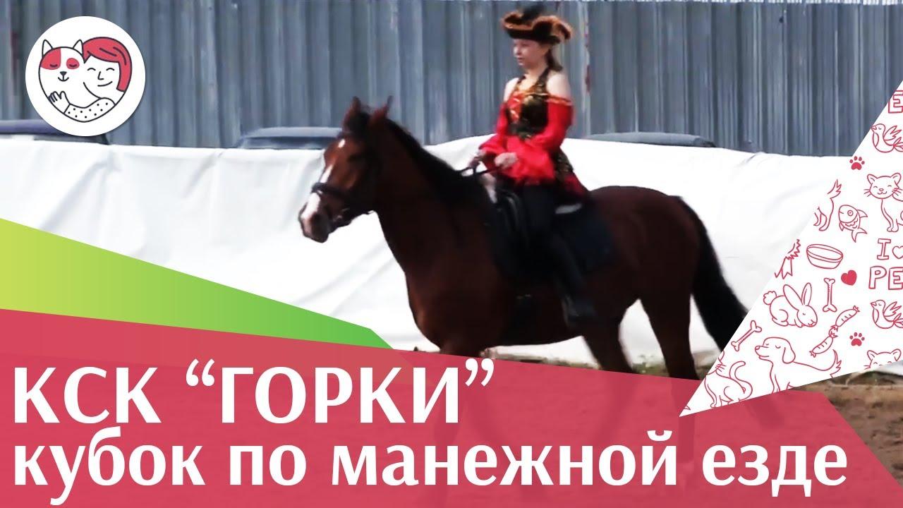 Летний  кубок  КСК Горки по  манежной езде КЮР часть 42 на ilikepet