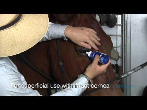Vetericyn Plus Eye Wash for All Animals (3 oz) Video