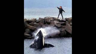 Michael Jackson Will You Be There Free Willy