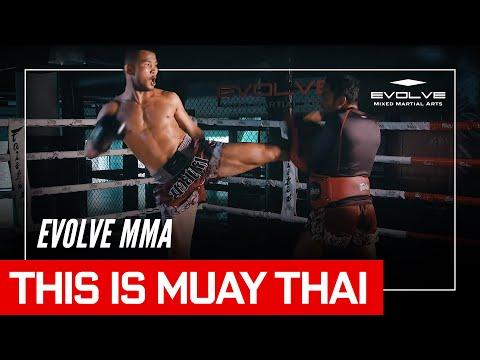 This Is Muay Thai