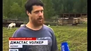 Веселый фермер и сыр, которого не будет