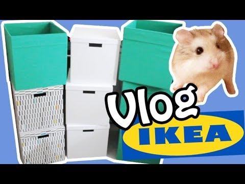 Für Hamsterzubehör & Kaninchen 🐹🐰 Kallax Boxen kaufen 🔨  IKEA Vlog 🚗