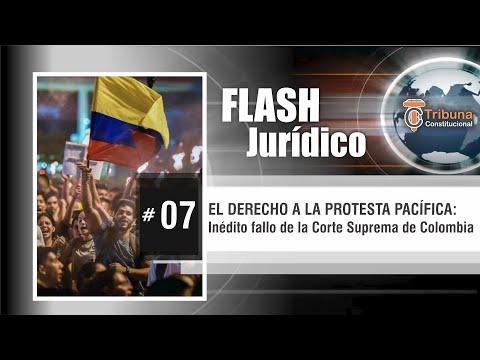 EL DERECHO A LA PROTESTA PACÍFICA - Flash Jurídico #7