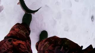 Рыбалка в арнеево серпуховского
