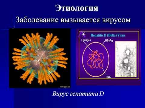 Гепатит какой он бывает