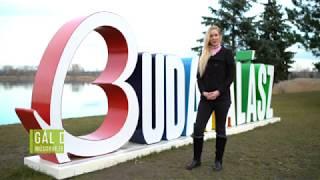TV Budakalász / Kultúrcseppek / 2018.01.05.