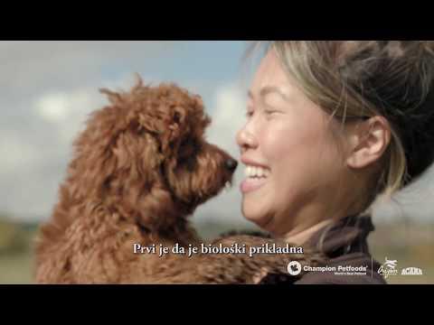 Acana hrana za osetljive pse