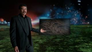 cosmos a spacetime odyssey season 1 episode 1 in hindi