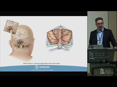 Anatomy of the Dorsal Brainstem, Fourth Ventricle and Telovelar Approach