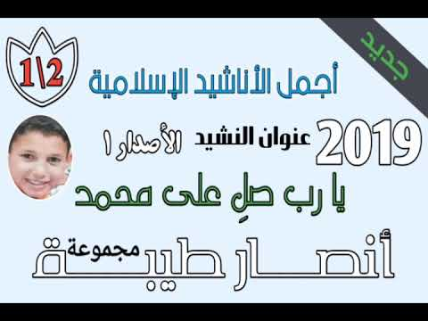 طيبة محمد cover