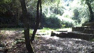 preview picture of video 'Font d'en Sert, Collserola Park (Barcelona)'
