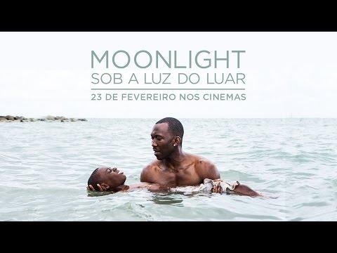moonlight film torrent