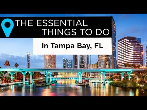Video The Essential Things to Do in Tampa Bay, Florida