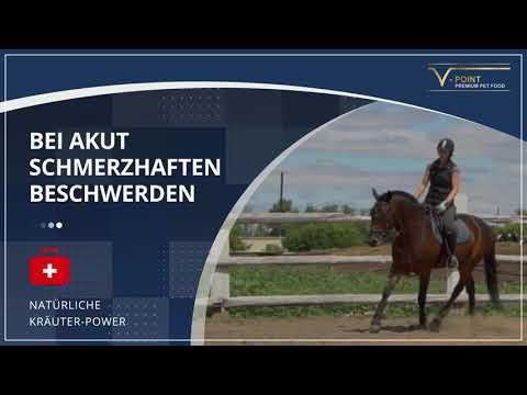 V-Point® ARTHRO Acute Horse Joints (German text/audio)