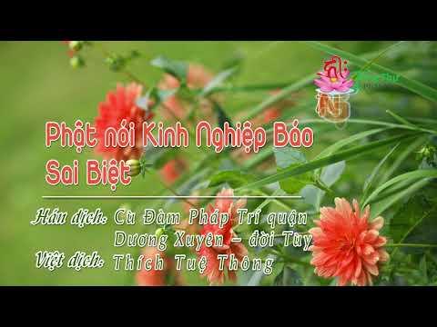 Kinh Nghiệp Báo Sai Biệt
