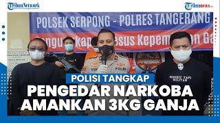 Polisi Tangkap Pengedar Narkoba di Tangsel, Pelaku Sering Menyasar Sejumlah Kampus di Jakarta