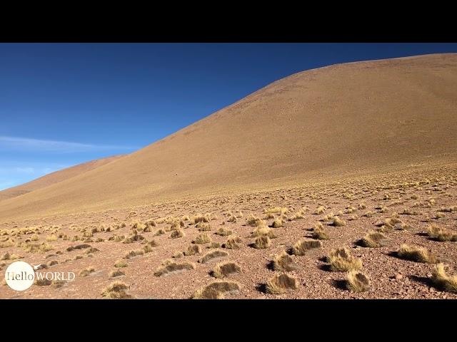Abenteuer 100 Tage Südamerika: Panorama bei der Laguna Collpa Bolivien