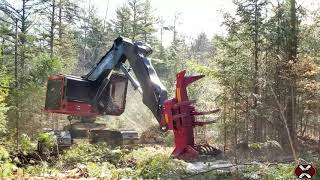TimberPro TL745D Feller Buncher Cutting in New Hampshire