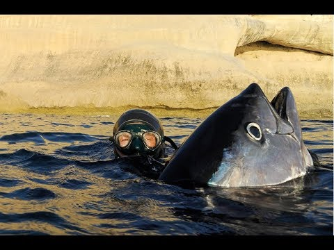 Omsk che pesca nel sito web protetta