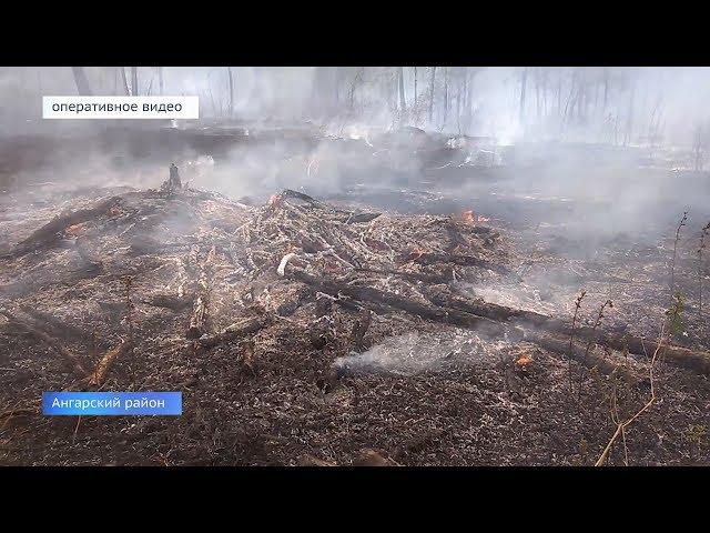 Лесные пожары не случайны?
