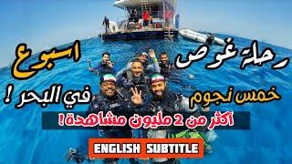 فلوق الغوص في البحر الأحمر | مصر | سفاري ناتلس 2017