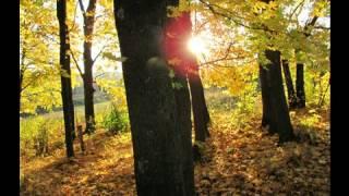 предоставляет скачати пісню осінь осінь осінь исключено