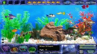 Fish Tycoon video