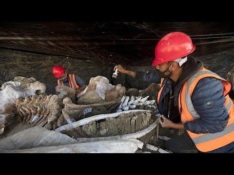 Μεξικό: Νεκροταφείο μαμούθ βρέθηκε σε εργοτάξιο αεροδρομίου…