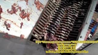 MONSTER  Измельчение переработка отходов мяса и рыбы