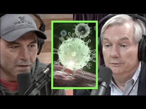 Joe Rogan a Michael Osterholm o závažnosti koronaviru