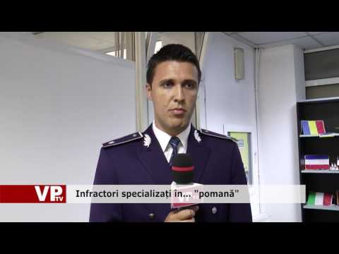 """Infractori specializați în… """"pomană"""""""