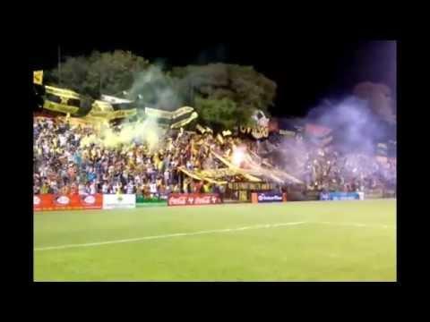 """""""LA RAZA AURINEGRA - Recibimiento GUARANÏ vs los putos de la B - Clausura 2014 [HD]"""" Barra: La Raza Aurinegra • Club: Guaraní de Asunción"""