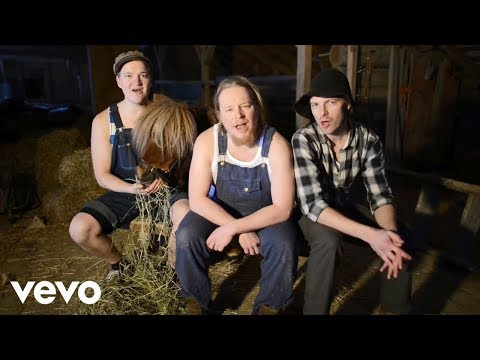 Steve`n`Seagulls - You Shook Me All Night Long...