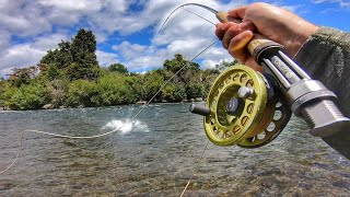 Fly Fishing World Famous River For Large Brown Trout!